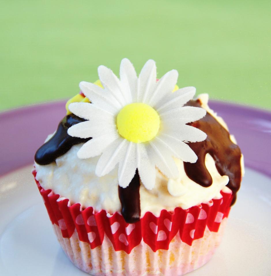 Macadamia-Fudge Cupcake